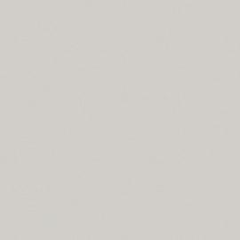 ДСП Светло-серый